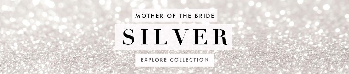 Picture of: Silver Mother of the Bride Dresses