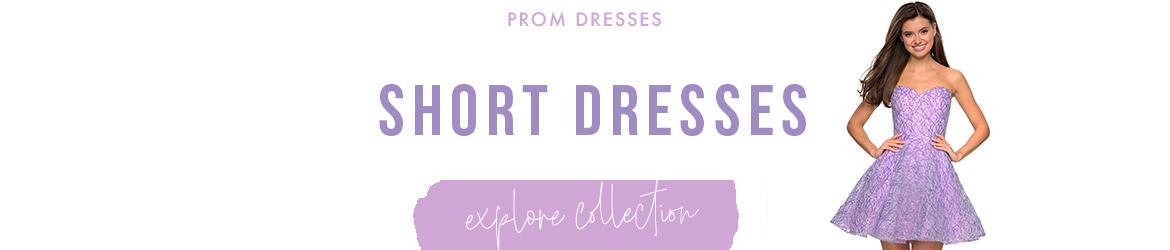 Picture of: Short Prom Dresses