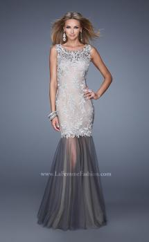 Picture of: Embroidered Sleeveless Dress with Sheer Tulle Skirt in Silver, Style: 21100, Main Picture