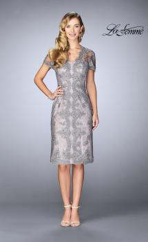 Picture of: Short Lace Dress with Illusion Back and Neckline in Pink/Gray, Style: 24931, Main Picture